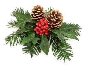 Pine Cone Christmas Decoration